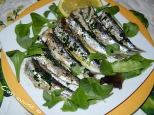 sardine alla griglia
